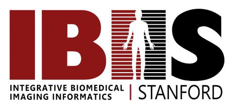Integrative Biomedical Imaging Informatics at Stanford
